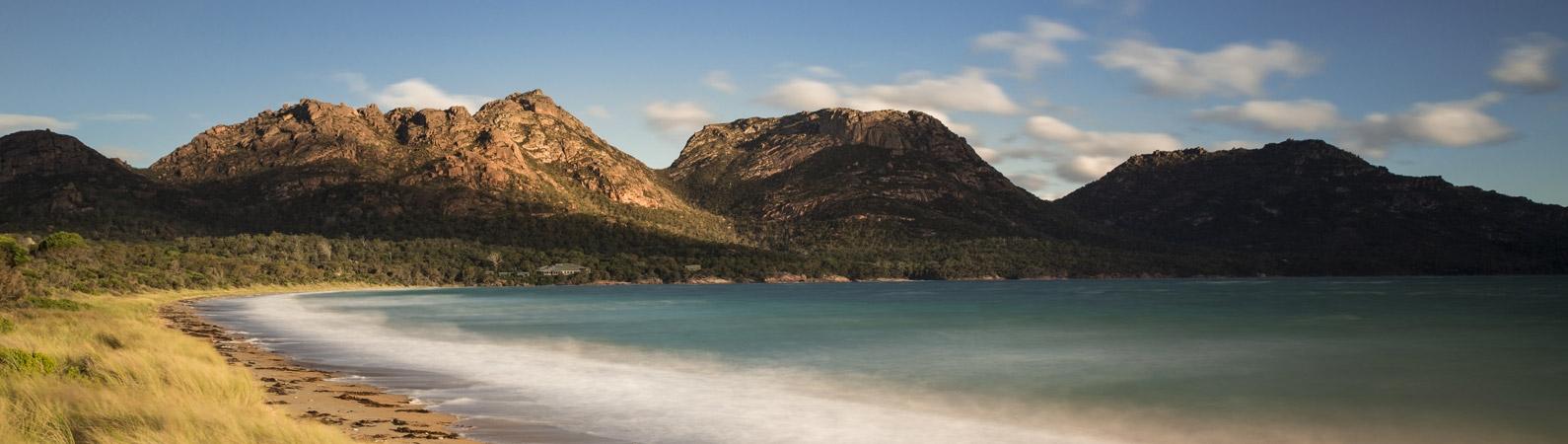 Poivre de Tasmanie lyophilisé