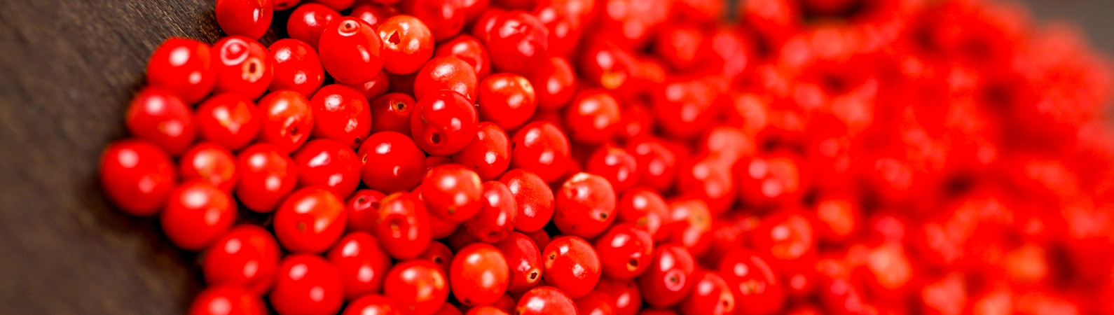 Poivres rouges